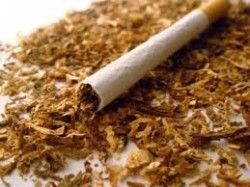 natural stimulant substances